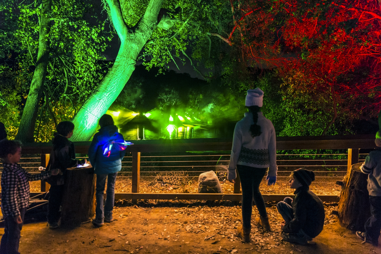 Lightswitch and 4wall transform descanso gardens into enchanted forest of light press center for Enchanted forest descanso gardens