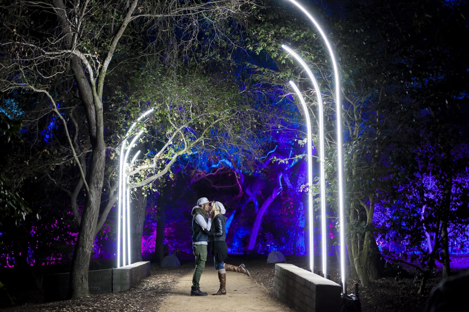 Lightswitch and 4wall transform descanso gardens into enchanted descanso gardens famous camellias are highlighted in shades of blue and red choreographed to ambient music in the fantasy forest display aloadofball Gallery